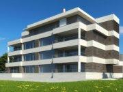 Detaljnije: STAN, 5.0, prodaja, Beograd, 284 m2, 1500000e