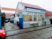 Detaljnije: POSLOVNI PROSTOR, 5.0, prodaja, Pančevo, 382 m2, 180000e