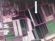 Detaljnije: PLAC, , prodaja, Šimanovci, 0 m2, 850000e