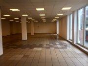 Detaljnije: LOKAL, >5.0, izdavanje, Beograd, 550 m2, 4000e